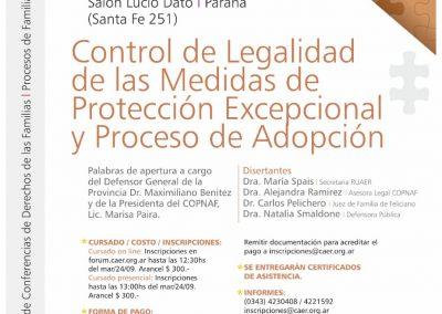 control_legalidad_medidas_proteccion_excepcional_proceso_adpcion